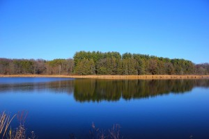 Large Serene Lake with Forest Background