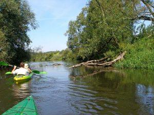 Kayaking in Wappingers Creek
