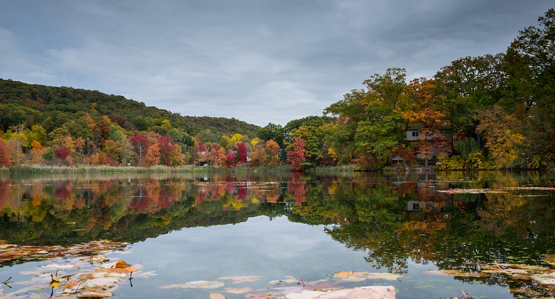 fall colors over a body of water